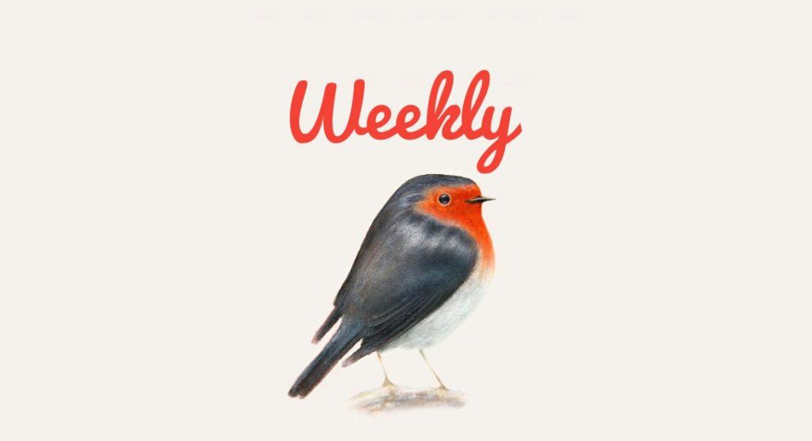 brunori weekly
